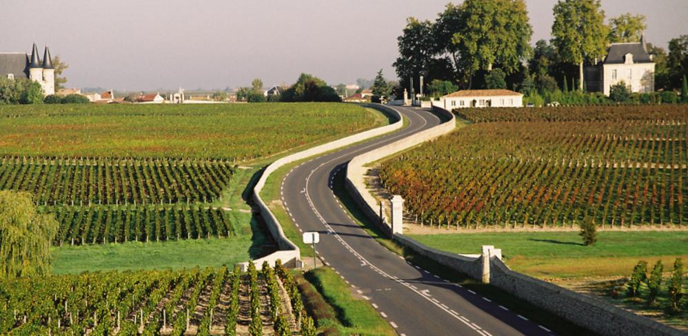 Vignobles de la route des vins du Médoc